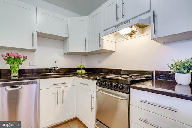 1301 Delaware Avenue SW N225, WASHINGTON, DC 20024 (#DCDC515170) :: Ram Bala Associates | Keller Williams Realty