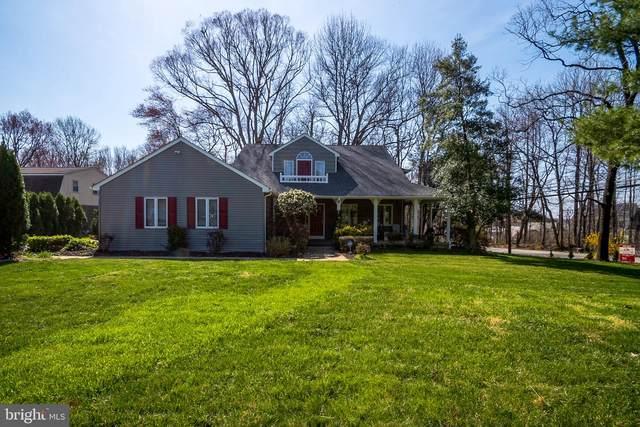 1001 White Birch Drive, NEWARK, DE 19713 (#DENC523768) :: Linda Dale Real Estate Experts