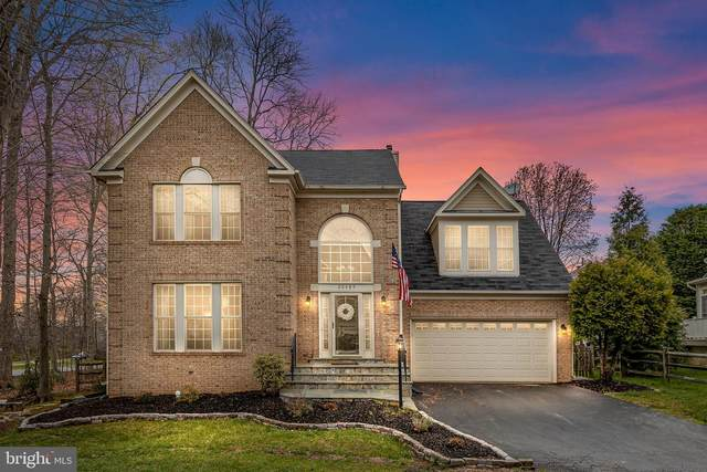 20489 Mcgees Ferry Way, POTOMAC FALLS, VA 20165 (#VALO434786) :: Colgan Real Estate