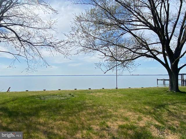 Bay Drive, STEVENSVILLE, MD 21666 (#MDQA147300) :: Advance Realty Bel Air, Inc