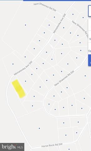 Minnetonka Avenue SW, WESTERNPORT, MD 21562 (#MDAL136626) :: The Redux Group