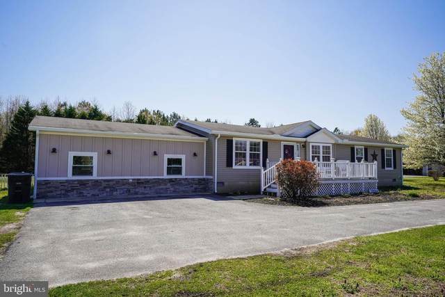 29264 Piney Neck Road, DAGSBORO, DE 19939 (#DESU180478) :: CoastLine Realty