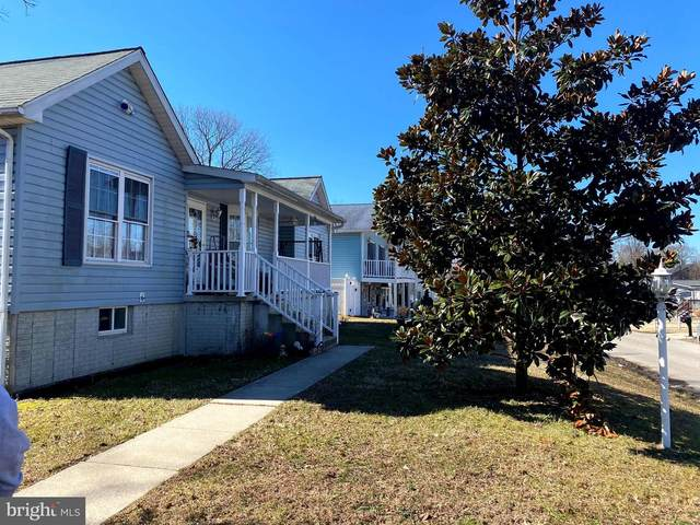 709 212TH Street, PASADENA, MD 21122 (#MDAA463998) :: Gail Nyman Group
