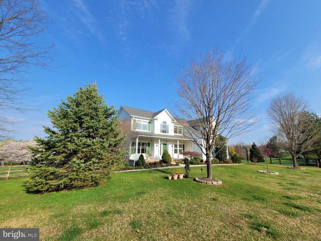714 Breezy Lake Way, SYKESVILLE, MD 21784 (#MDCR203552) :: Gail Nyman Group