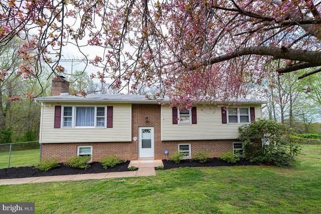 6818 Chestnut Oak Lane, WARRENTON, VA 20187 (#VAFQ169854) :: A Magnolia Home Team