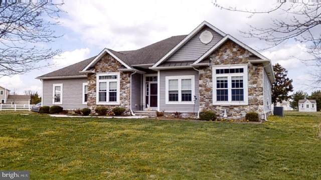 23595 Harvest Run Reach, MILTON, DE 19968 (#DESU180542) :: RE/MAX Coast and Country