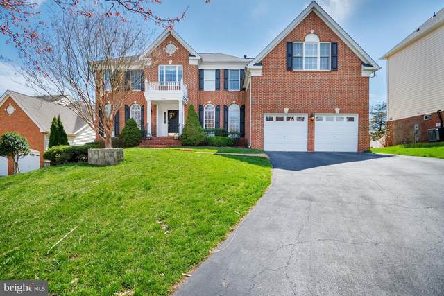 43265 Augustine Place, ASHBURN, VA 20147 (#VALO434938) :: Shawn Little Team of Garceau Realty