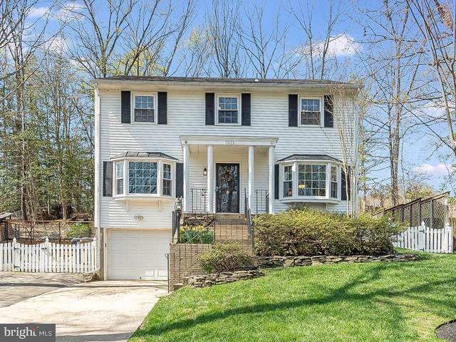 1003 England Drive, STAFFORD, VA 22554 (#VAST230864) :: Realty One Group Performance