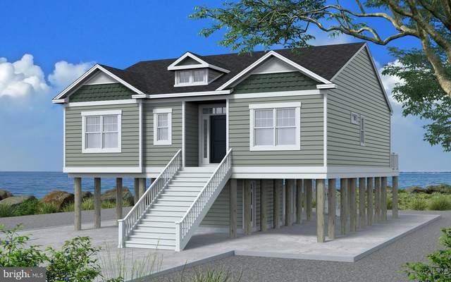 Lot 717 Castaway Drive, GREENBACKVILLE, VA 23356 (#VAAC100588) :: LoCoMusings