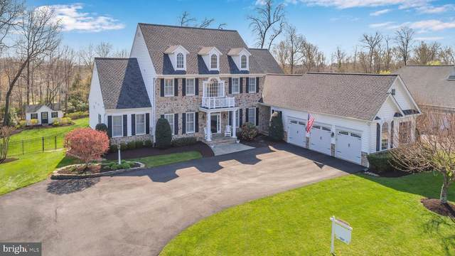 13241 Piedmont Vista Drive, HAYMARKET, VA 20169 (#VAPW518976) :: Realty One Group Performance
