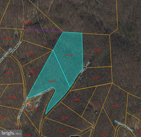Gamble Road, GREAT CACAPON, WV 25422 (#WVMO118274) :: Colgan Real Estate