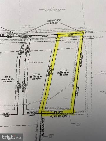 Lot 12 Main Street, FORT LOUDON, PA 17224 (#PAFL179024) :: AJ Team Realty