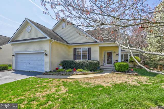 17 Berue Court, SELBYVILLE, DE 19975 (#DESU180604) :: Speicher Group of Long & Foster Real Estate