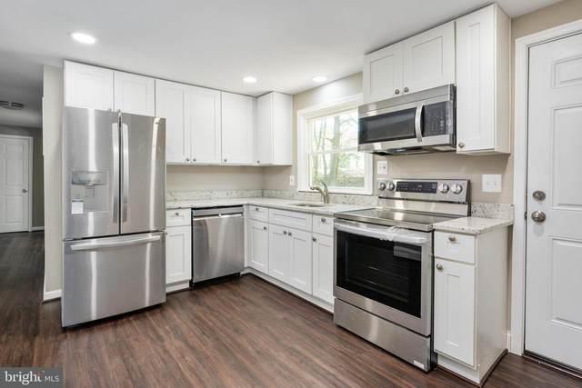 106 Kent Point Road, STEVENSVILLE, MD 21666 (MLS #MDQA147332) :: Maryland Shore Living | Benson & Mangold Real Estate