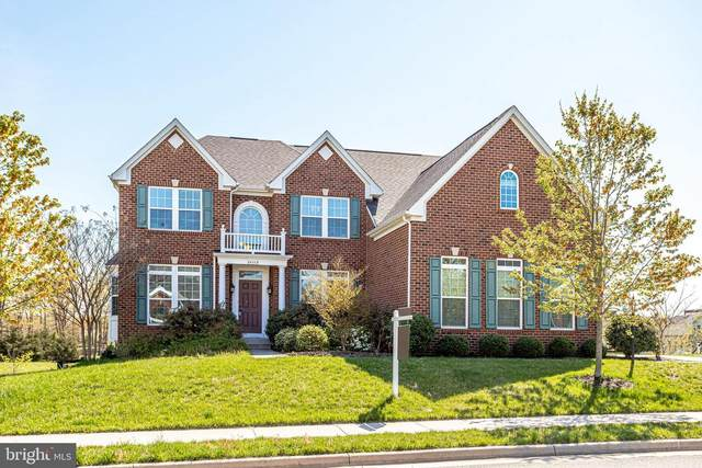 24112 Statesboro Place, ASHBURN, VA 20148 (#VALO435018) :: Bruce & Tanya and Associates