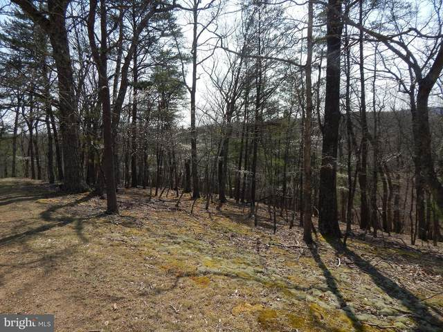 Lot 72 Moss Lane, GREAT CACAPON, WV 25422 (#WVMO118280) :: Network Realty Group