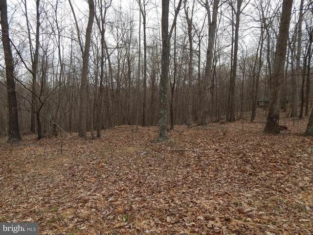 Lot 37 Riggs Lane, BERKELEY SPRINGS, WV 25411 (#WVMO118282) :: The Redux Group