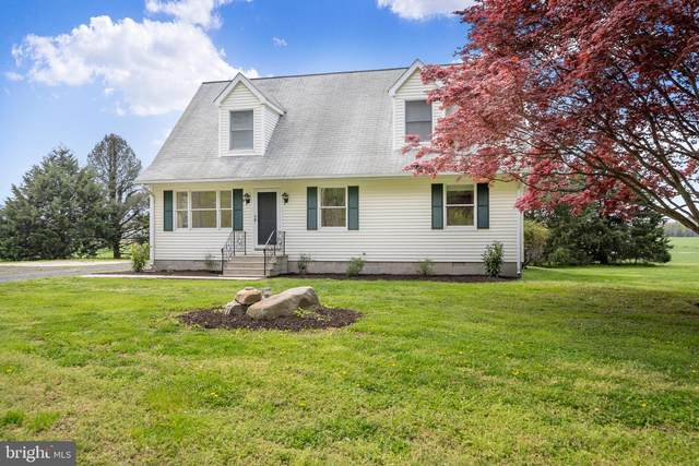 961 Brownsville Road, CENTREVILLE, MD 21617 (#MDQA147340) :: The Redux Group