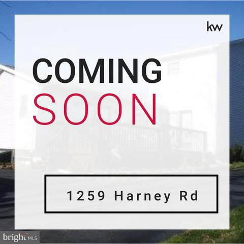 1259 Harney Road, LITTLESTOWN, PA 17340 (#PAAD115616) :: The Joy Daniels Real Estate Group