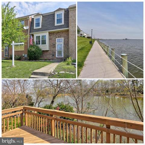 1346 Cox Cove Court, STONEY BEACH, MD 21226 (#MDAA464380) :: Realty One Group Performance
