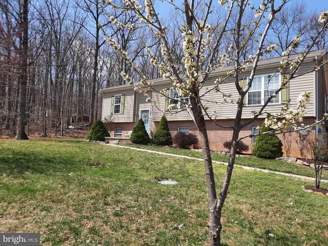 823 Pheasant Drive, WINCHESTER, VA 22602 (#VAFV163360) :: Jacobs & Co. Real Estate