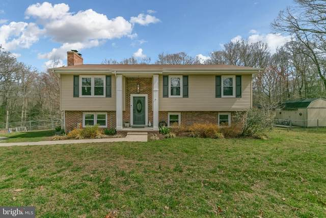 10242 Charles Street, LA PLATA, MD 20646 (#MDCH223474) :: Realty One Group Performance