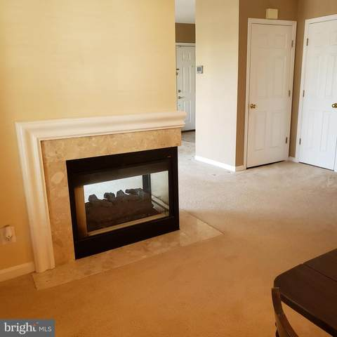 6035 Terrapin Place #304, ALEXANDRIA, VA 22310 (#VAFX1192026) :: Major Key Realty LLC