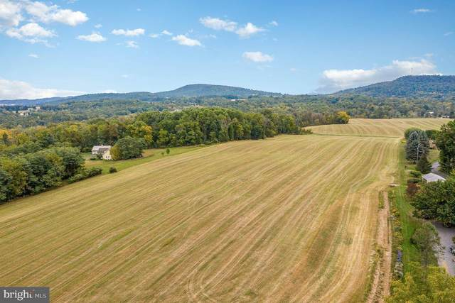 LOT 16 Lightfoot Lane, DILLSBURG, PA 17019 (#PAYK155992) :: The Joy Daniels Real Estate Group