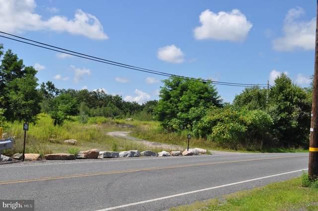 155 Lakeside Avenue, DELANO, PA 18220 (#PASK134794) :: The Joy Daniels Real Estate Group