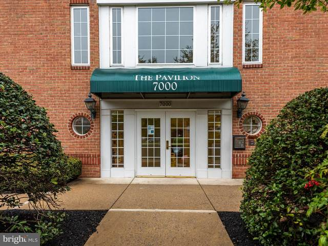7000 Falls Reach Drive #205, FALLS CHURCH, VA 22043 (#VAFX1192078) :: RE/MAX Cornerstone Realty