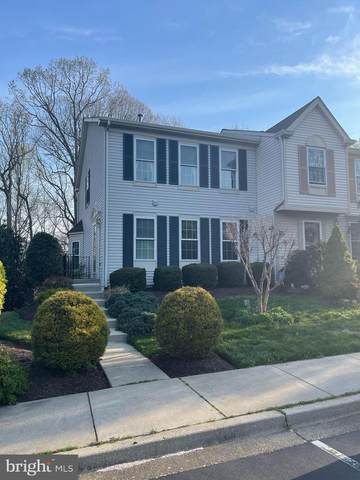1210 Seminole Drive, ARNOLD, MD 21012 (#MDAA464422) :: Gail Nyman Group