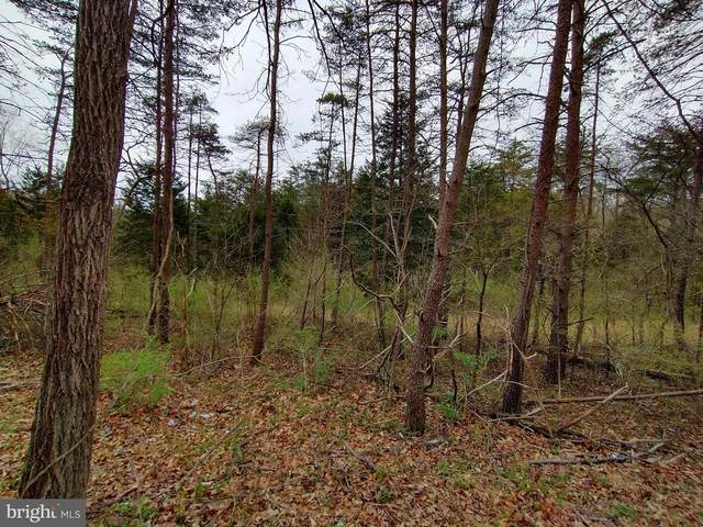 Lot 7 Foxes Hollow Rd, ROMNEY, WV 26757 (#WVHS115512) :: Corner House Realty