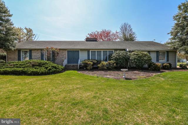 315 Grace Street, MILLSBORO, DE 19966 (#DESU180740) :: Atlantic Shores Sotheby's International Realty