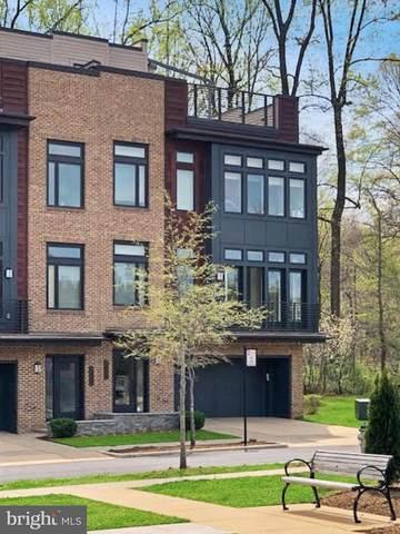 5416 Merriam Street, BETHESDA, MD 20814 (#MDMC752260) :: Dart Homes