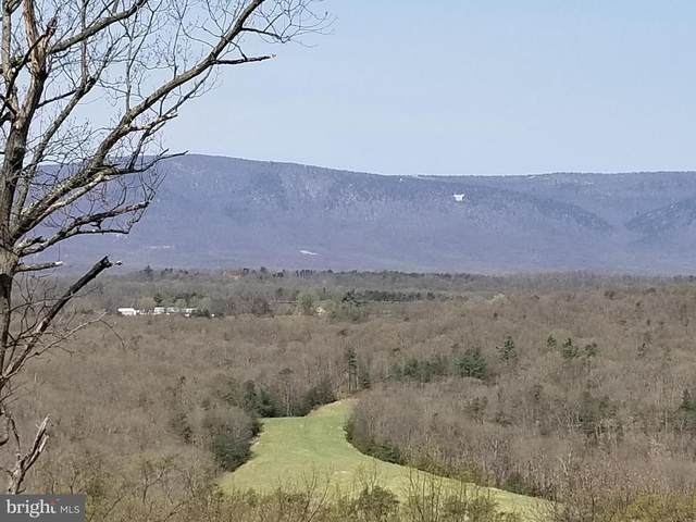 Lot 57 Timberline Ridge Road, STAR TANNERY, VA 22654 (#VASH121944) :: Shawn Little Team of Garceau Realty