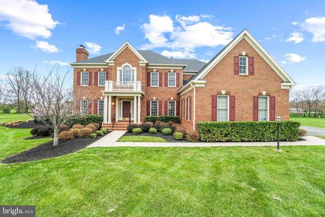16748 Chestnut Overlook Drive, PURCELLVILLE, VA 20132 (#VALO435274) :: Crossman & Co. Real Estate