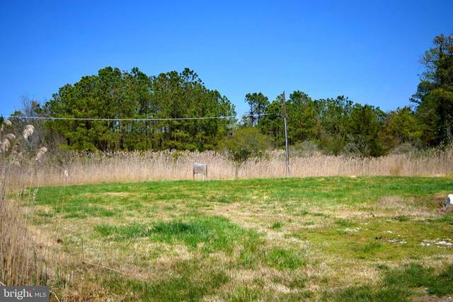 26754 John Nelson Lane, CRISFIELD, MD 21817 (#MDSO104676) :: Eng Garcia Properties, LLC