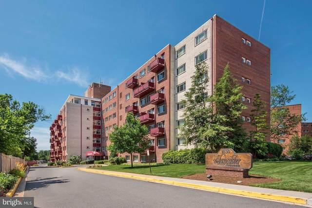 1830 Columbia Pike #214, ARLINGTON, VA 22204 (MLS #VAAR179336) :: Maryland Shore Living | Benson & Mangold Real Estate