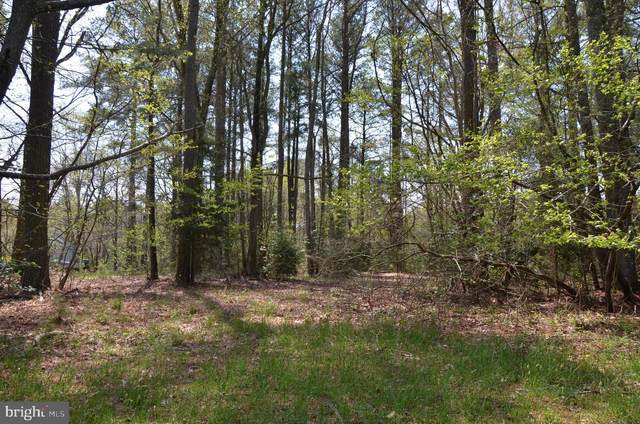 Lot 29 Portal Drive, MONTROSS, VA 22520 (#VAWE118186) :: ExecuHome Realty