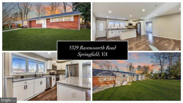 5329 Ravensworth Road, SPRINGFIELD, VA 22151 (#VAFX1192532) :: SURE Sales Group