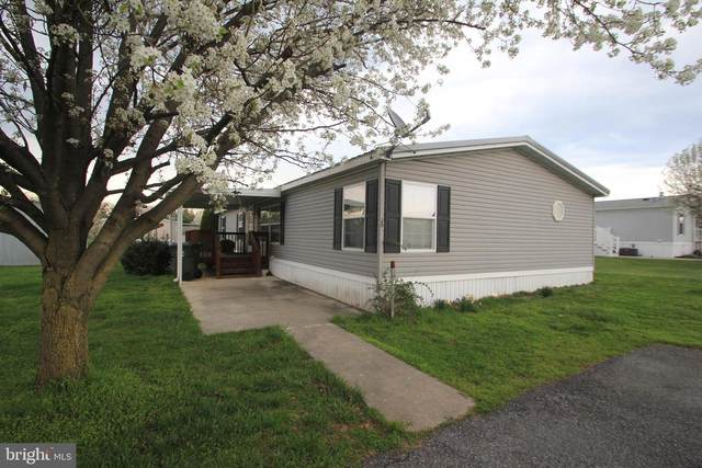 20 Maizefield Dr, SHIPPENSBURG, PA 17257 (#PAFL179138) :: The Riffle Group of Keller Williams Select Realtors