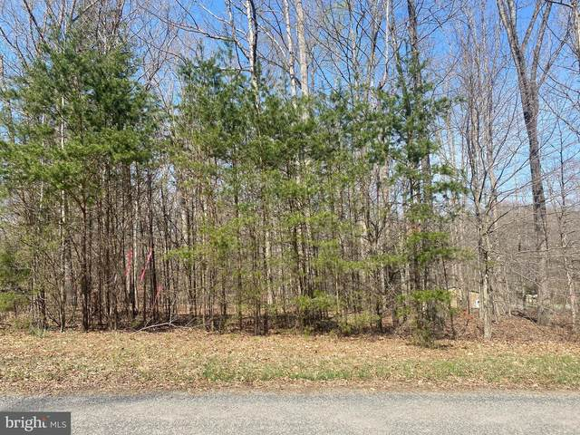 Lot 117 Fisher Drive, MINERAL, VA 23117 (#VALA123006) :: Arlington Realty, Inc.