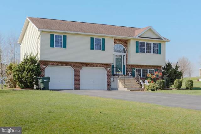 3 Antler Court, SHIPPENSBURG, PA 17257 (#PACB133760) :: The Jim Powers Team