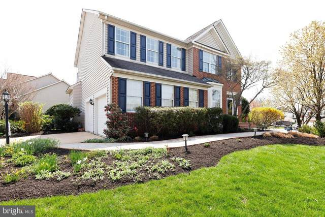 20808 Rainsboro Drive, ASHBURN, VA 20147 (#VALO435372) :: Pearson Smith Realty