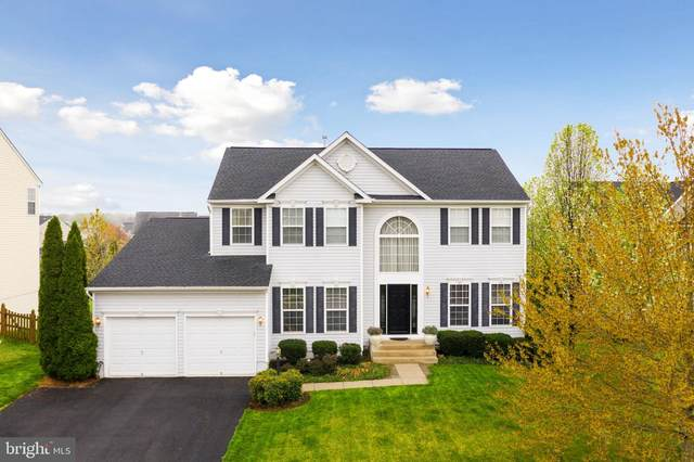 324 Spring Branch Court, PURCELLVILLE, VA 20132 (#VALO435388) :: Pearson Smith Realty