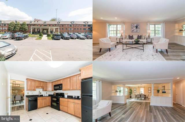 5301 Westbard Circle #404, BETHESDA, MD 20816 (#MDMC752604) :: Integrity Home Team