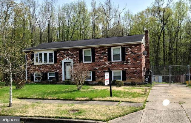9023 Little Stone Drive, FORT WASHINGTON, MD 20744 (#MDPG602746) :: Realty One Group Performance