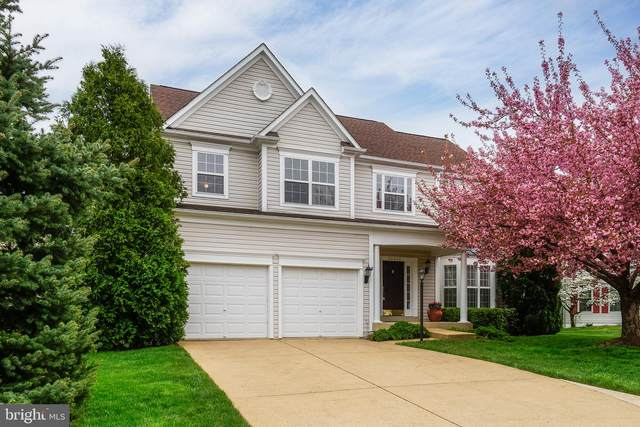 20802 Crofton Court, ASHBURN, VA 20147 (#VALO435420) :: The Lutkins Group