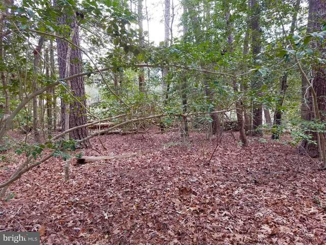 Lot 8 Section C Spring Lake Drive, LEXINGTON PARK, MD 20653 (#MDSM175582) :: Gail Nyman Group