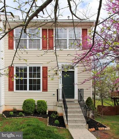 45512 Lakemont Square, STERLING, VA 20165 (#VALO435436) :: Pearson Smith Realty